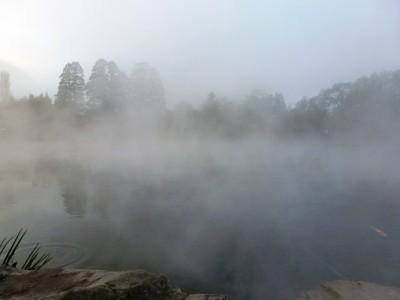 湯布院冬の名物 金鱗湖の朝霧